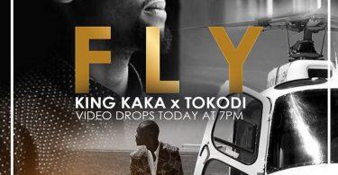 DOWNLOAD MP3 King Kaka & Pascal Tokodi - Fly