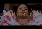 DOWNLOAD VIDEO Shilole – Pindua Meza Mp4