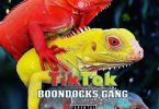 DOWNLOAD MP3 Boondocks Gang - Tiktok
