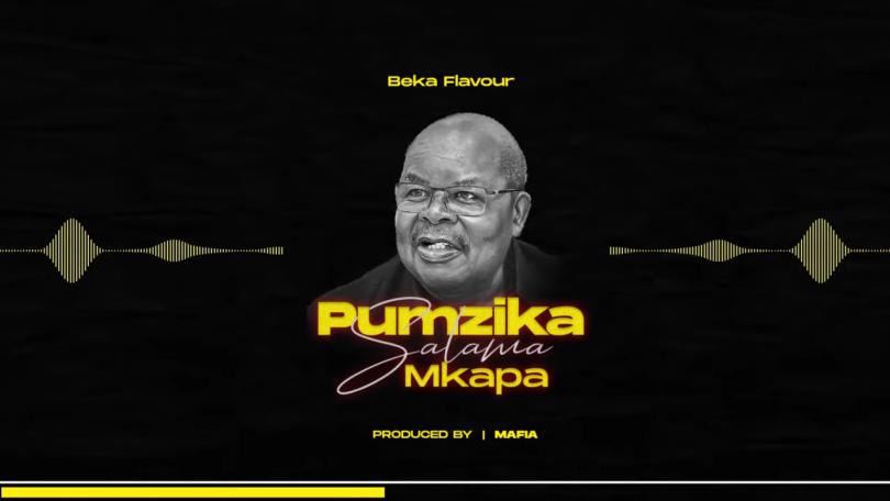 DOWNLOAD MP3 Beka Flavour - Pumzika Salama